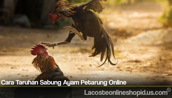 Cara Taruhan Sabung Ayam Petarung Online